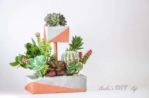 Maceta de cemento para plantas crasas
