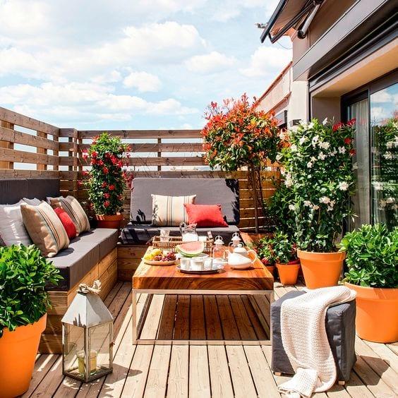 Decorar tu terraza o jardín con plantas