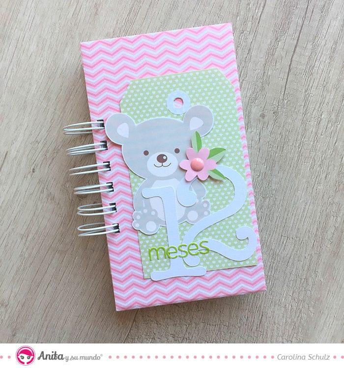 minialbum rosa bebé