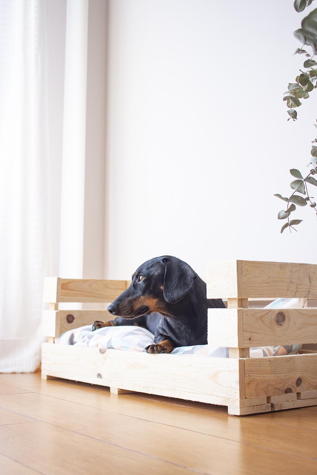 diy cama perro madera