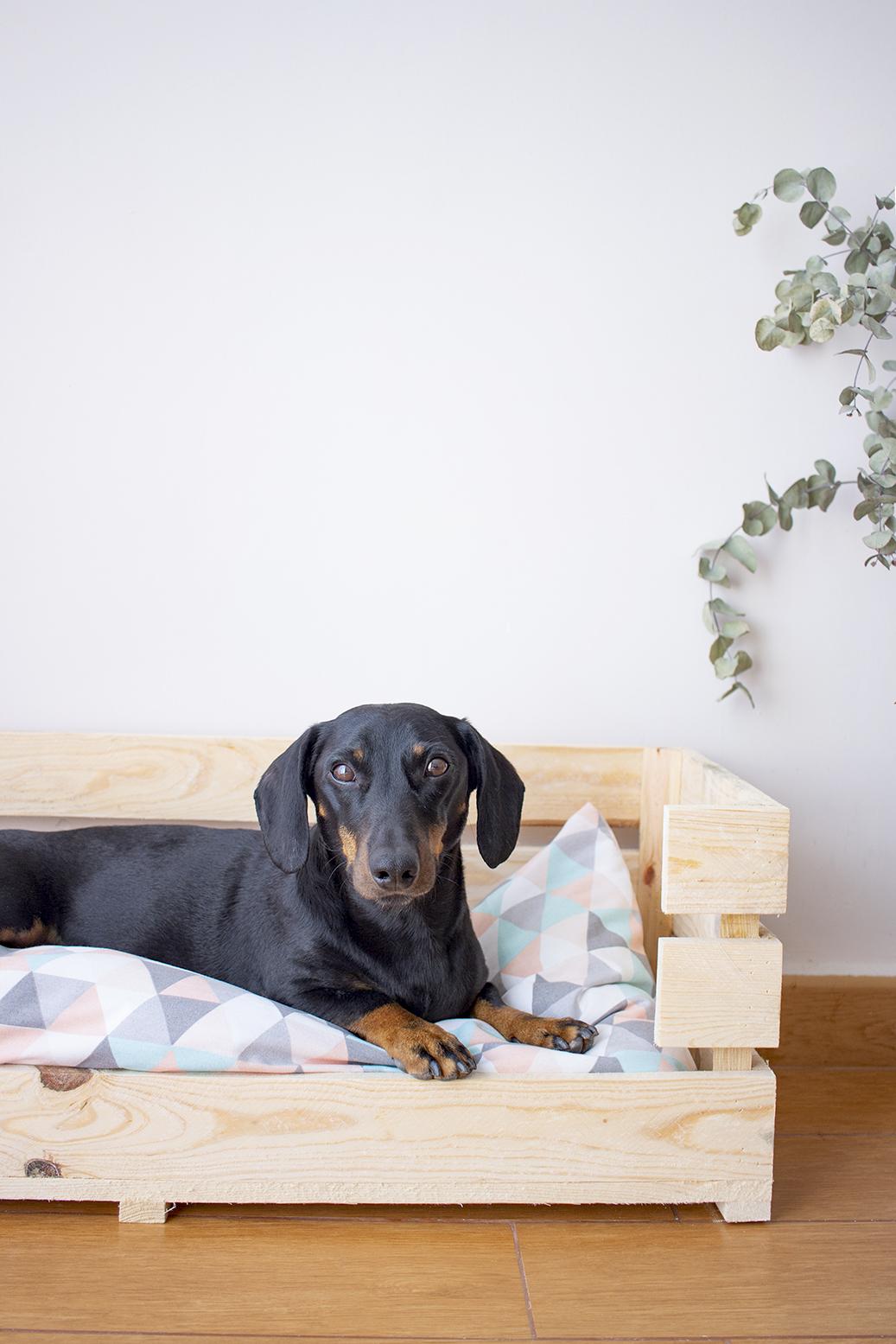 cómo hacer una cama para perros