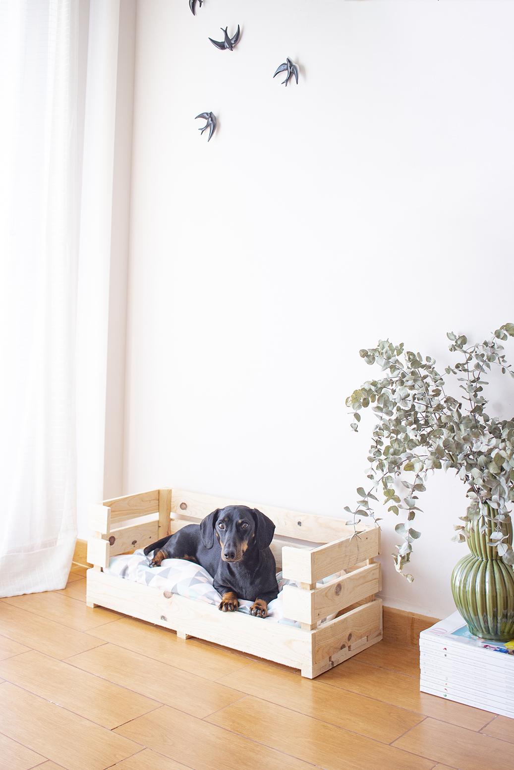 diy cama perro