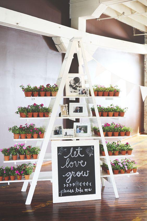 Regala plantas en tu boda