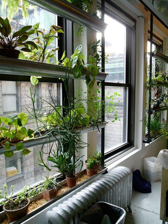 Huerto urbano en la terraza - Tubos de PVC a modo de maceteros