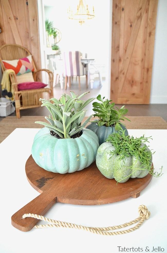 Calabazas de Halloween - calabazas convertidas en macetas para plantas