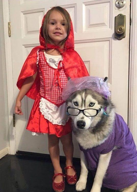 Disfraz Carnaval Caperucita Roja con perro haciendo de Lobo feroz