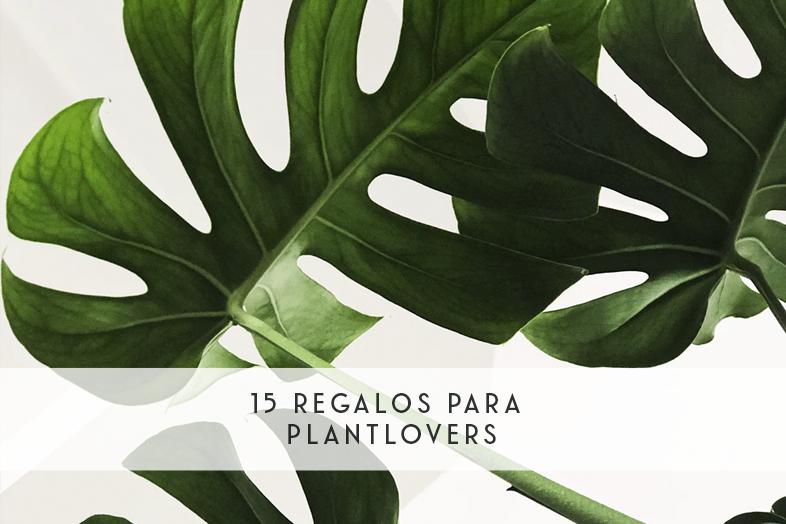 15 regalos para plantlovers
