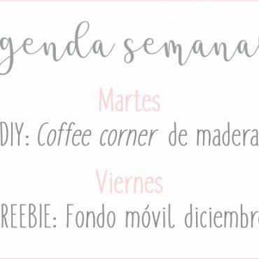 Agenda Semanal 18/11 – 24/11