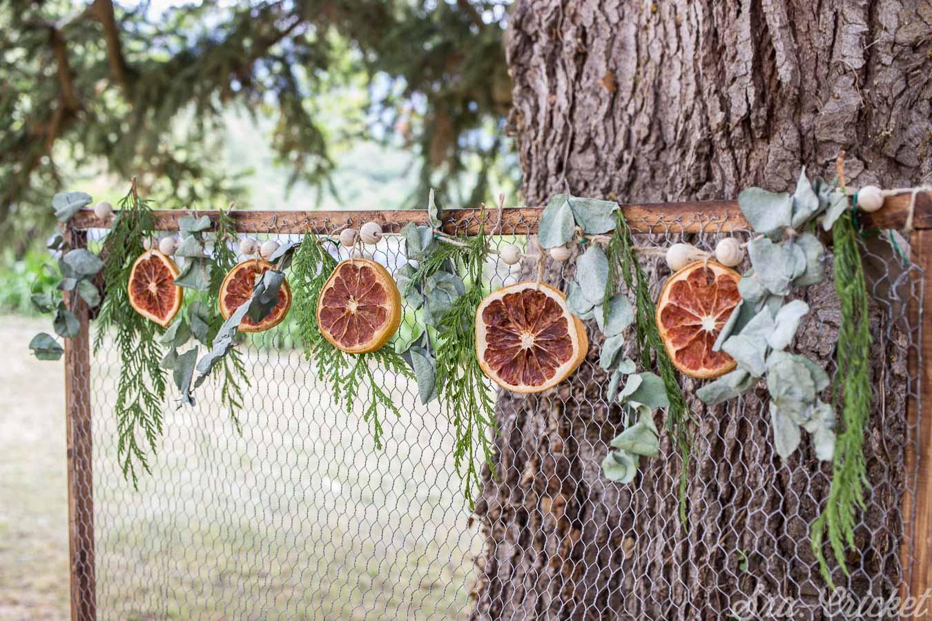 guirnalda de fruta seca y hojas