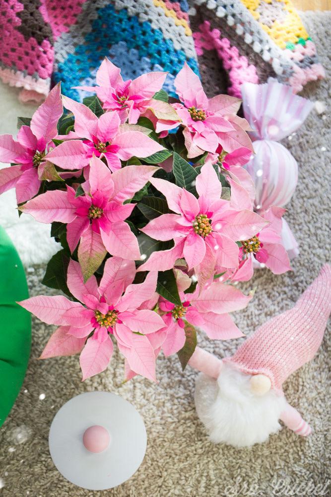 decoracion navidad rosa
